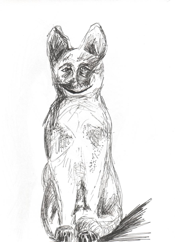 Cat2 web